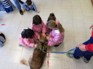 pet-therapy-spoleto